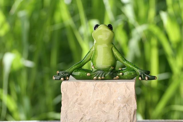 rana medita yoga